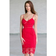 Caitlin Crochet Lace Pencil Dress in Red